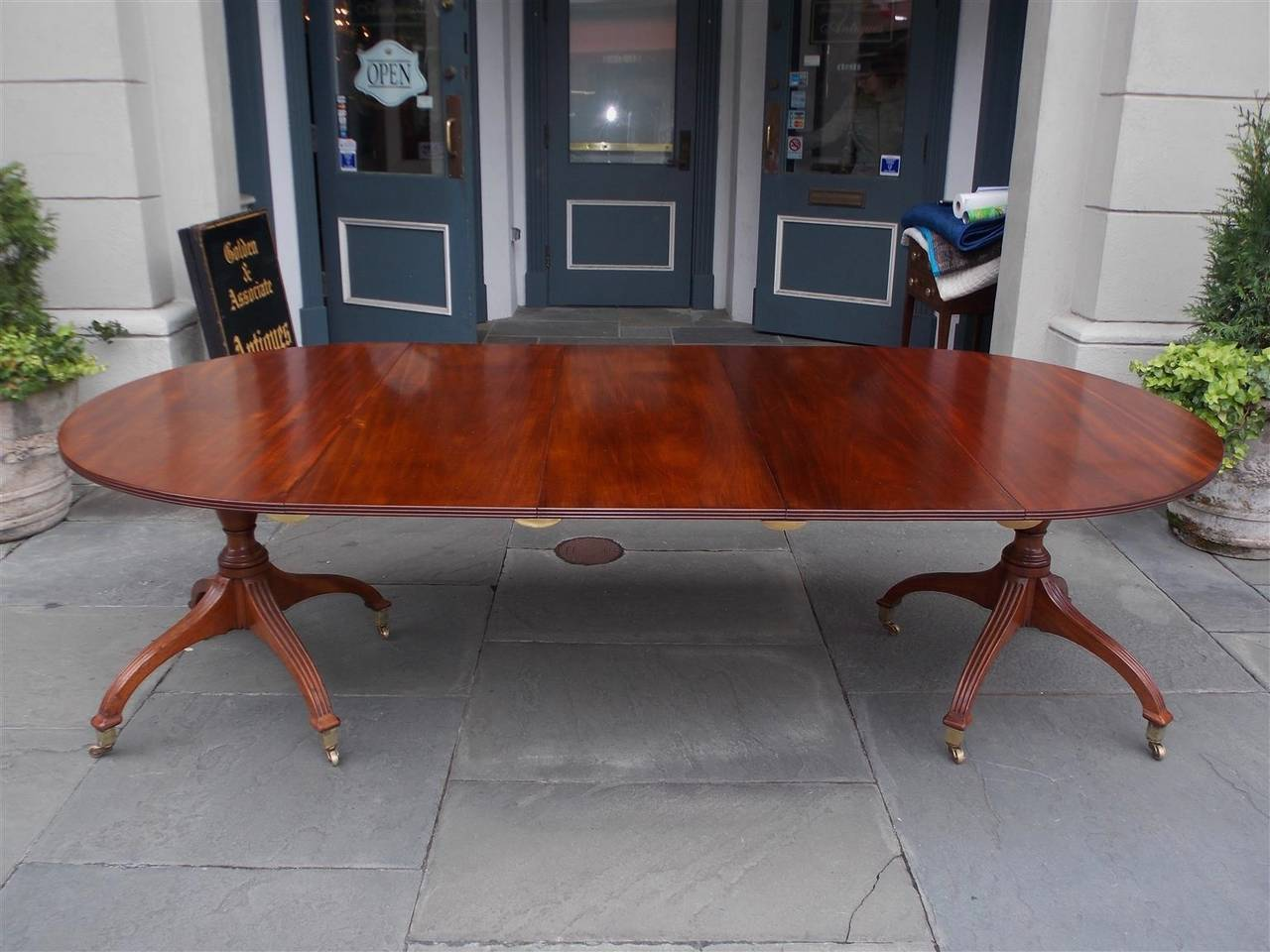 English mahogany three leaf double pedestal dining table with reeded molded edge, turned bulbous pedestals, resting on reeded saber legs with original brass cup casters. Early 19th century. Table has three removable leaves. 95