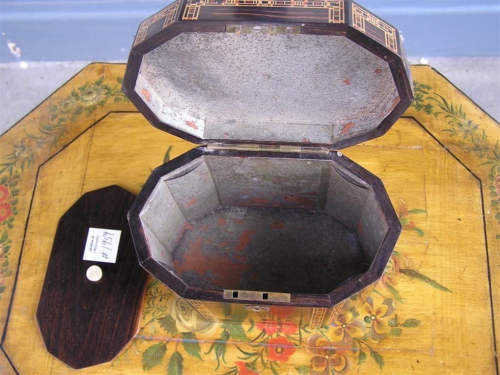 English Coromandel Lined Tea Caddy. Circa 1800 For Sale 1