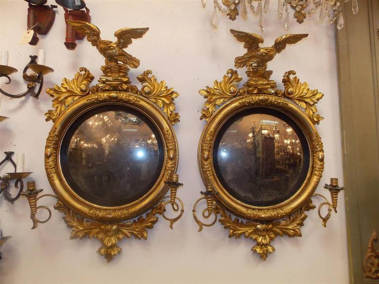 Pair of American gilt carved wood girandole mirrors with flanking eagles on rock plinths perched to flee , upper and lower acanthus carved floral motif, ebonized reeded circular molded edges , and the original scrolled candle arms.  Mirrors retain