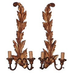 Pair of French Gilt Wood Sconces