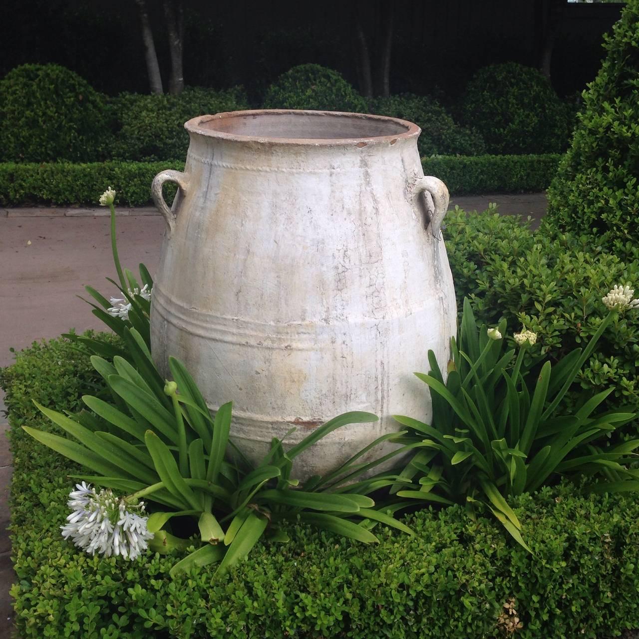 19th Century European Olive Jar At 1stdibs