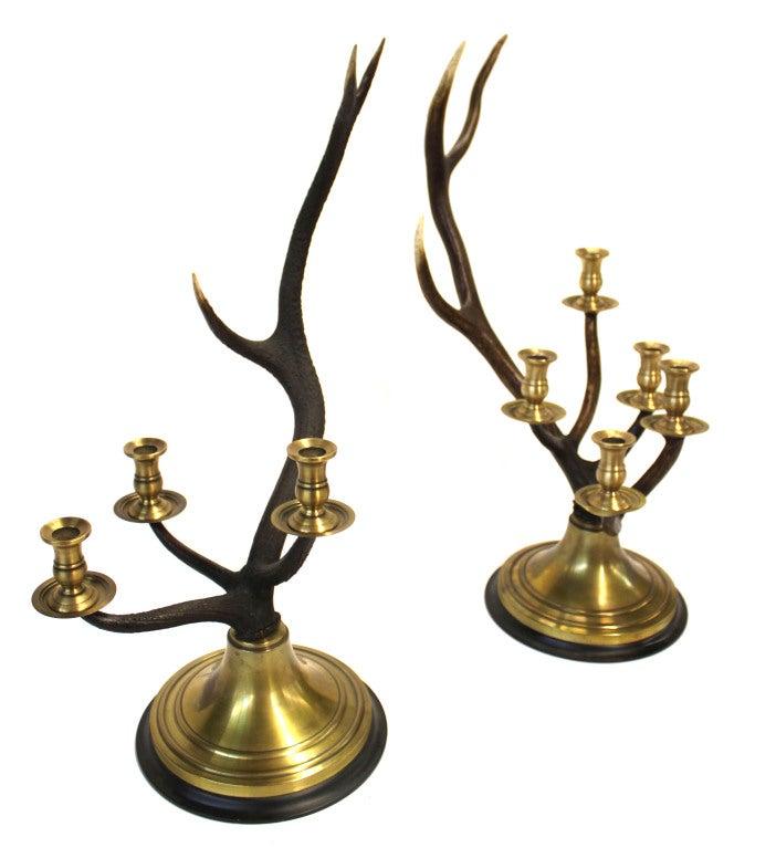 Stag Horn Candelabras Set 2