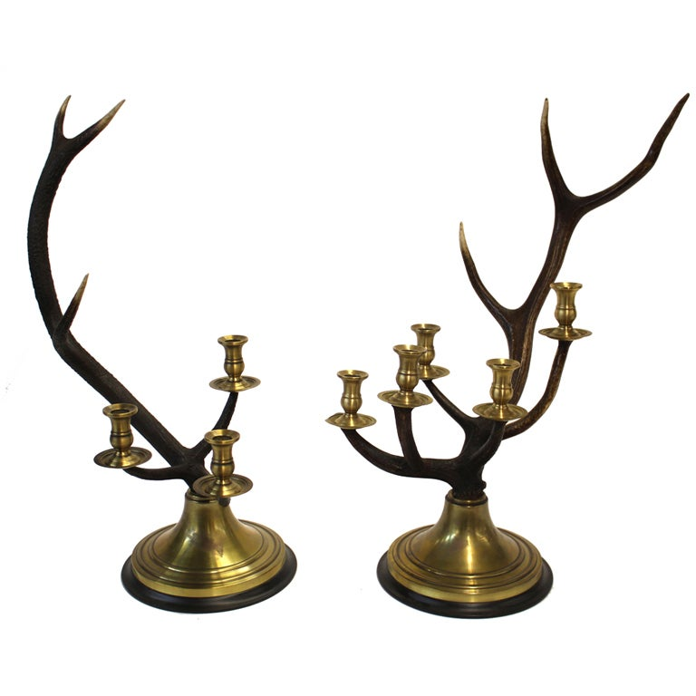 Stag Horn Candelabras Set 1