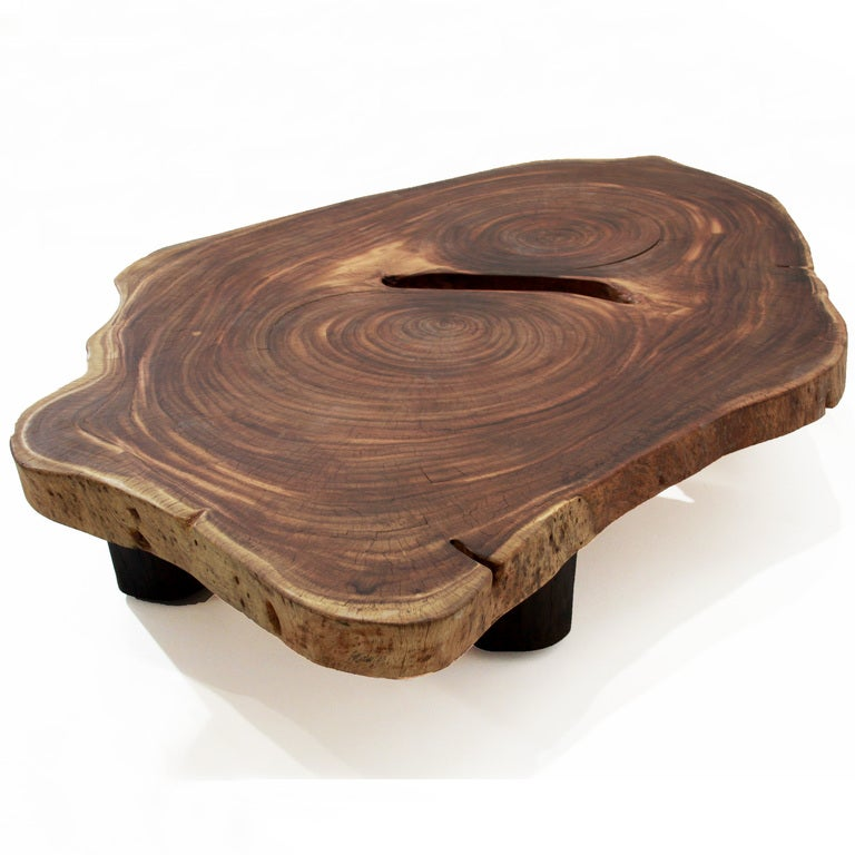 Oblong Double Tamboril Tree Root Section Coffee Table By Tunico T At 1stdibs