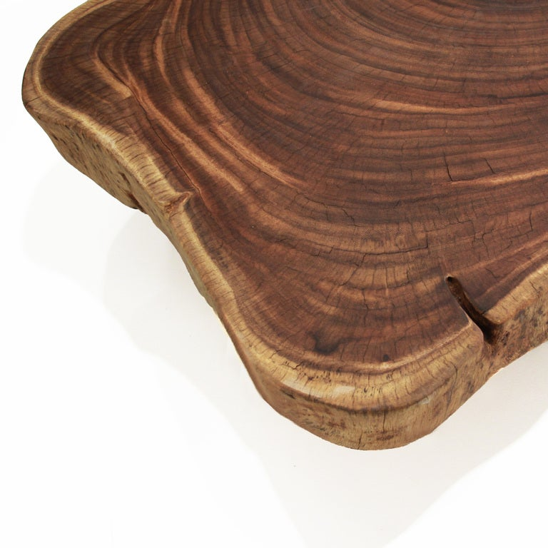 Live Edge Solid Slab Of Tamboril Coffee Table By Tunico T: Oblong Double Tamboril Tree Root Section Coffee Table By