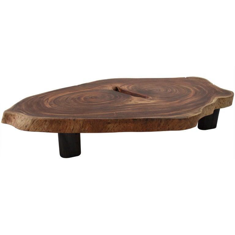 Tree Coffee Table Dk3: XXX_TunicoeyeletcoffetableMI.jpg
