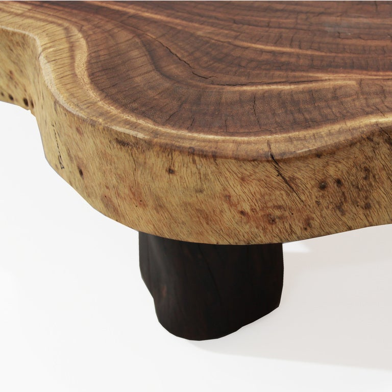 Root Coffee Table For Sale: Oblong Double Tamboril Tree Root Section Coffee Table By