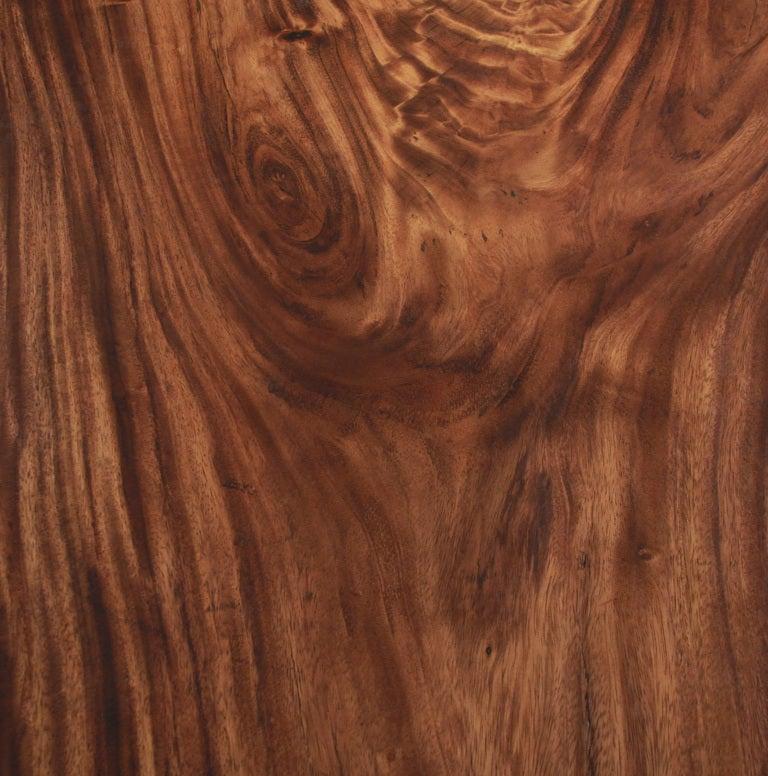 Adirondack Rustic Free Edge Slab Table For Sale At 1stdibs: Massive Live Edge Solid Tamboril Slab And Glass Coffee