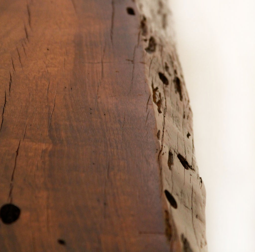 Live Edge Solid Slab Of Tamboril Coffee Table By Tunico T: Live Edge Bench Or Coffee Table By Zanini De Zanine At 1stdibs