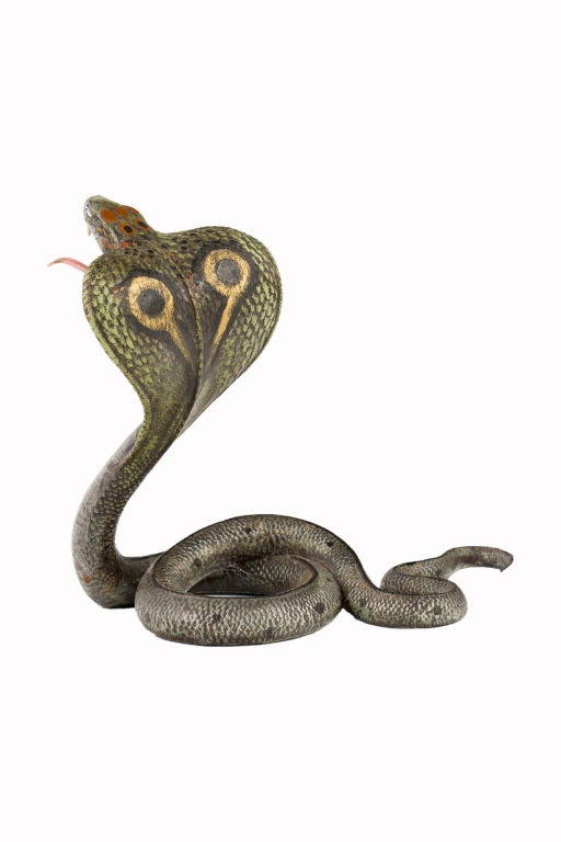 An Austrian cold-painted bronze of a cobra snake coiled with its head fanned out and tongue extended. The tongue is long enough to intercept a pocket-watch as photographed. The bronze is signed with the Bergman Foundry Mark and further signed,