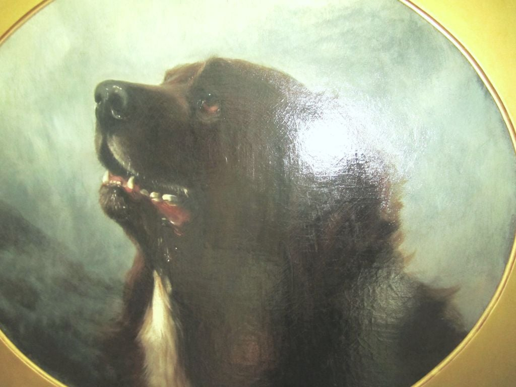 English Oil on Canvas Dog Painting of a St. Bernard by George Earl For Sale