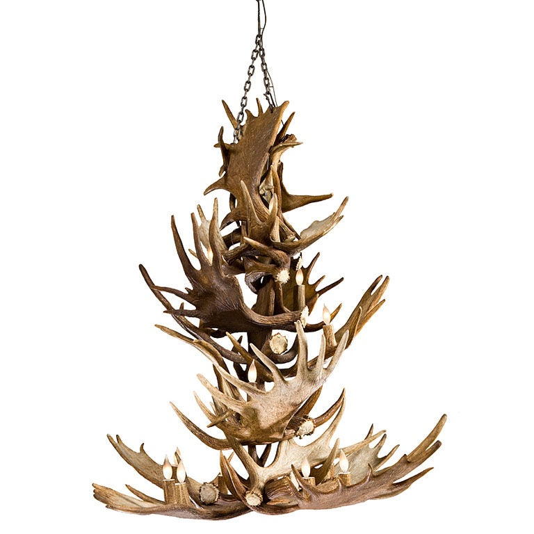 natural moose antler chandelier at 1stdibs