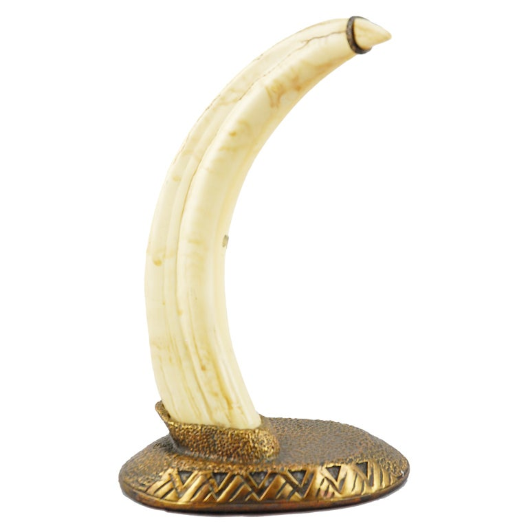Decorative African Warthog Tusk on Cast Bronze Base