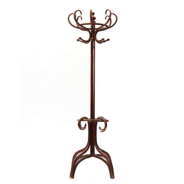 bentwood coat tree at 1stdibs