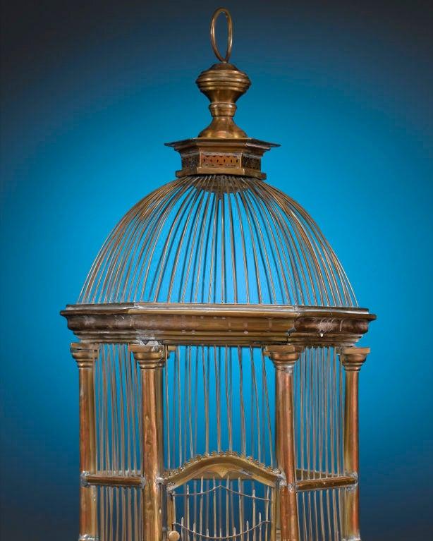 French Brass Hexagonal Birdcage 3