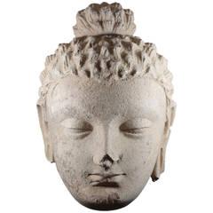 Large Gandharan Stucco Head of Buddha
