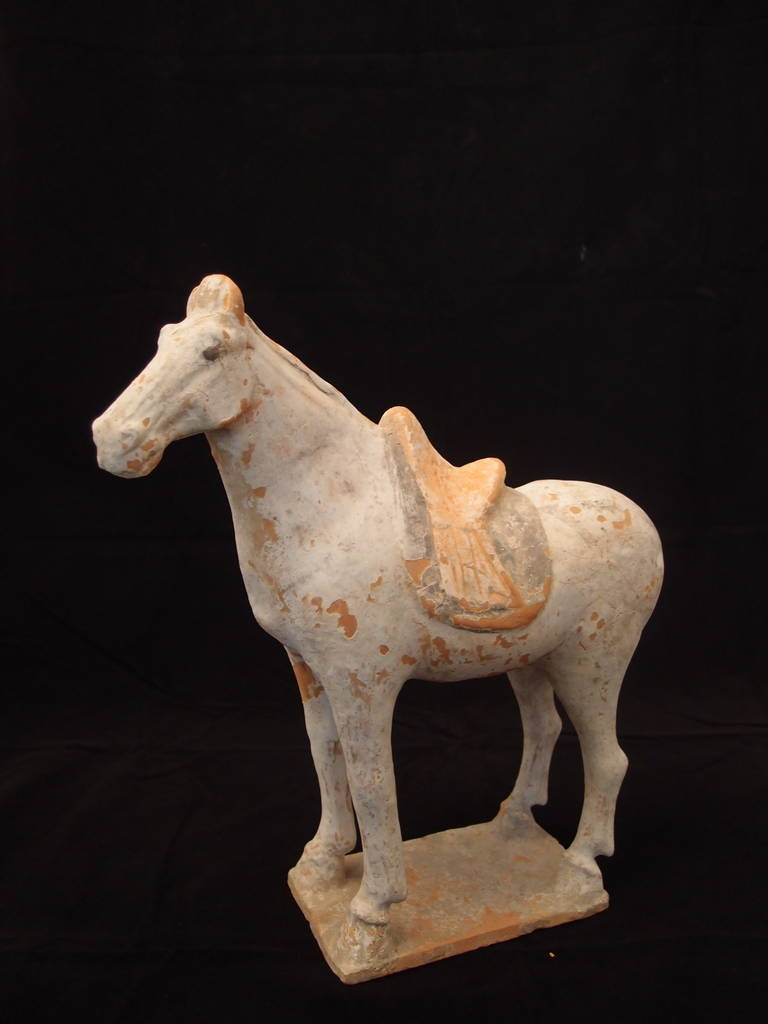 Chinese Tang Dynasty Painted Pottery Model of a Horse For Sale