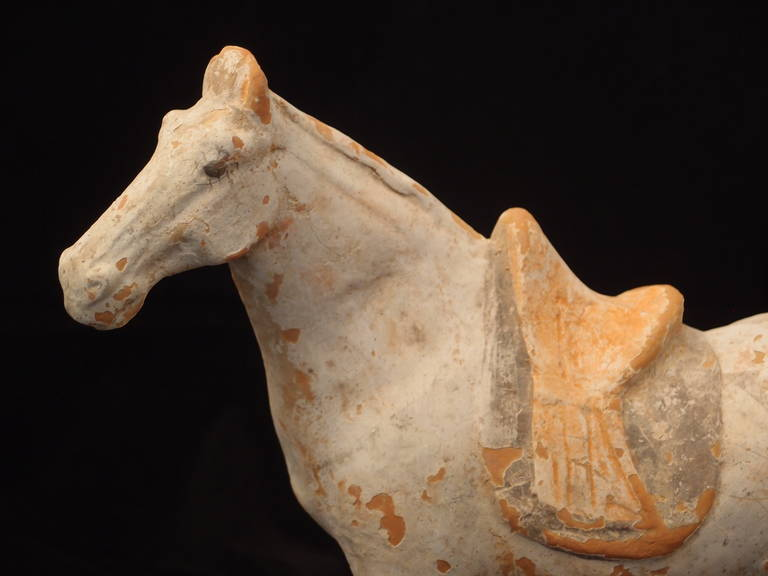 Tang Dynasty Painted Pottery Model of a Horse In Good Condition For Sale In Austin, TX