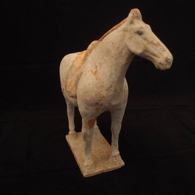 18th Century and Earlier Tang Dynasty Painted Pottery Model of a Horse For Sale
