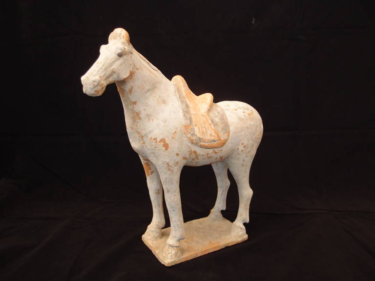 Tang Dynasty Painted Pottery Model of a Horse For Sale 1