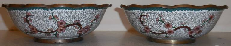20th Century Pair of Fine Chinese Cloisonné Bowls For Sale