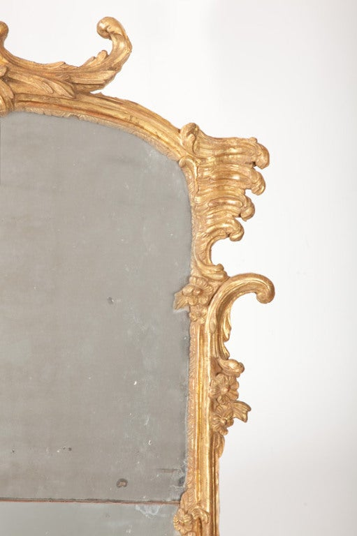 Giltwood Fine French Louis XV Gilt Wood Mirror For Sale