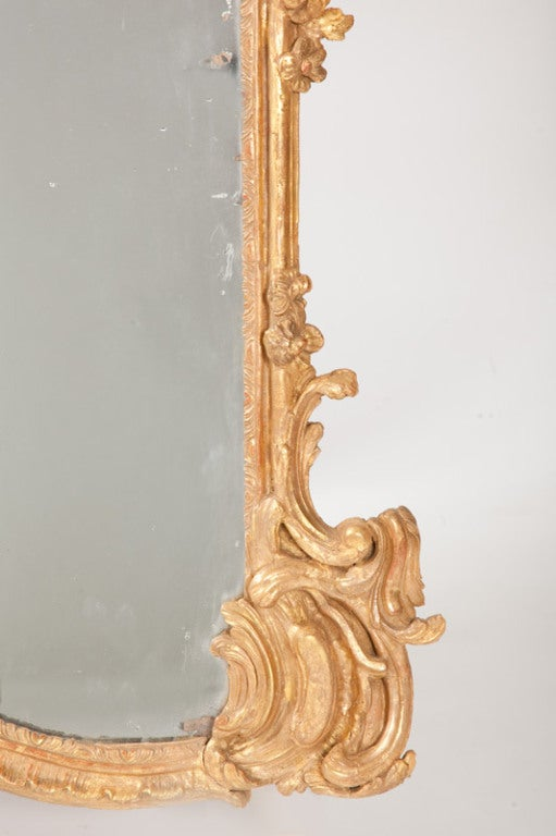 Fine French Louis XV Gilt Wood Mirror For Sale 1