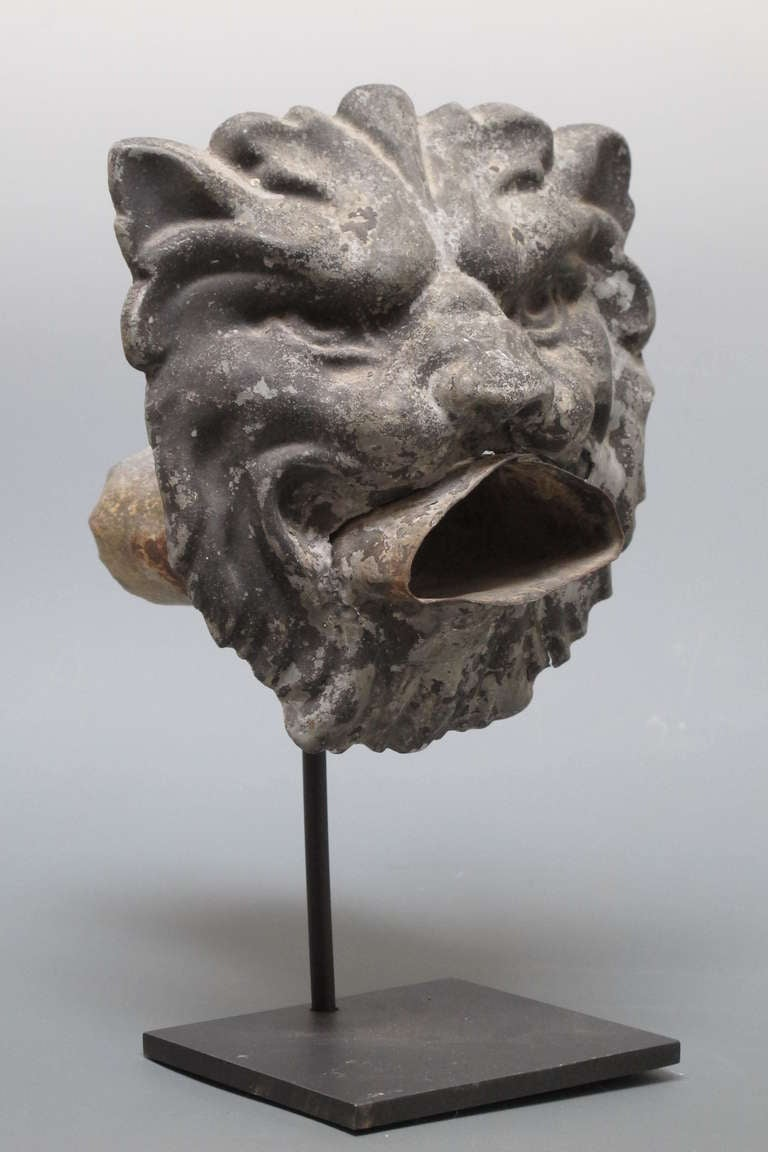 Tin Lion Head Water Spout At 1stdibs