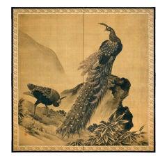 Peacock Pair by Cliffs