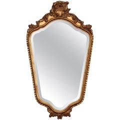 French Dark Gilt Mirror with Foliate Crown