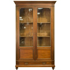 Louis XVI Style Two-Door Glazed Cupboard with Brass Detailing
