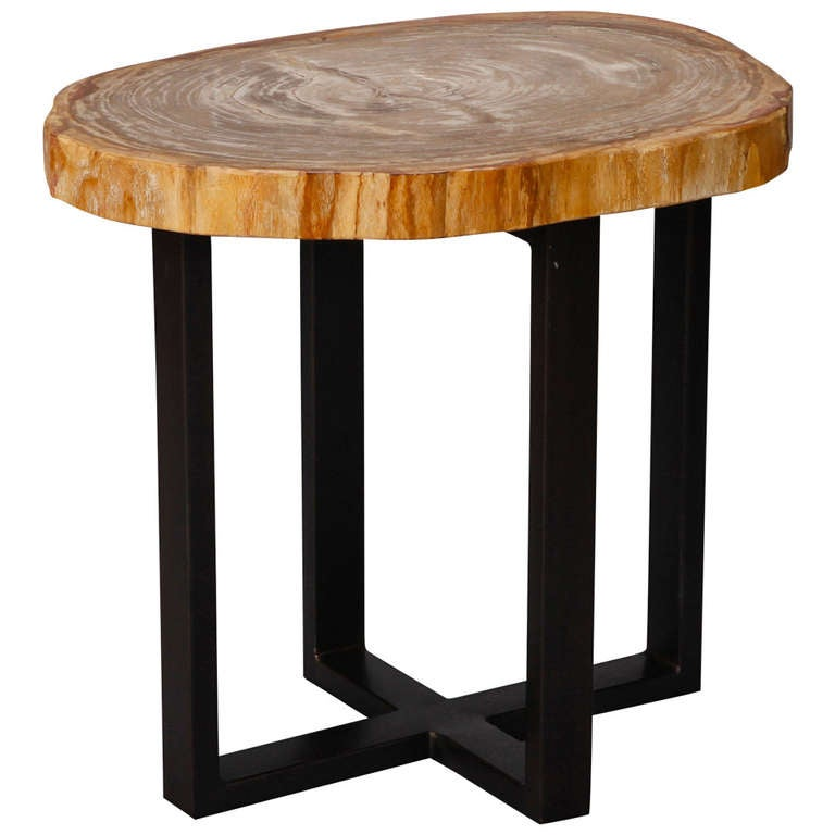 Small Side Table With Petrified Wood Top And Metal Legs For Sale