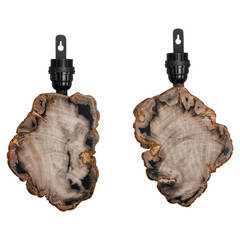 Pair of Sconces with Petrified and Polished Wood