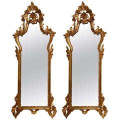 Pair of Narrow Italian Giltwood Mirrors