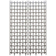 Large Don Harvey BONE Screen (3 Available, Priced Each)