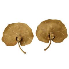 Ginkgo Leaf Sconce