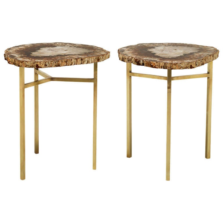 Petrified Wood Cocktail Tables