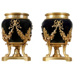 19th Century Gilt Bronze and Sevres Planters