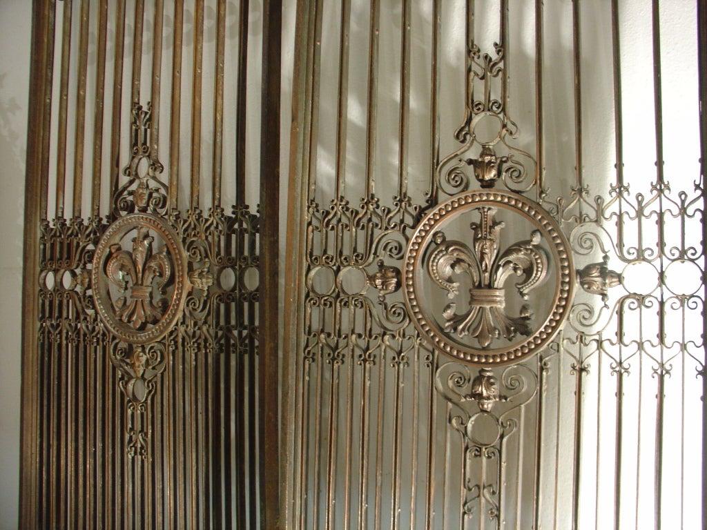 Pair of Antique Fleur De Lys Elevator Gates from France, C
