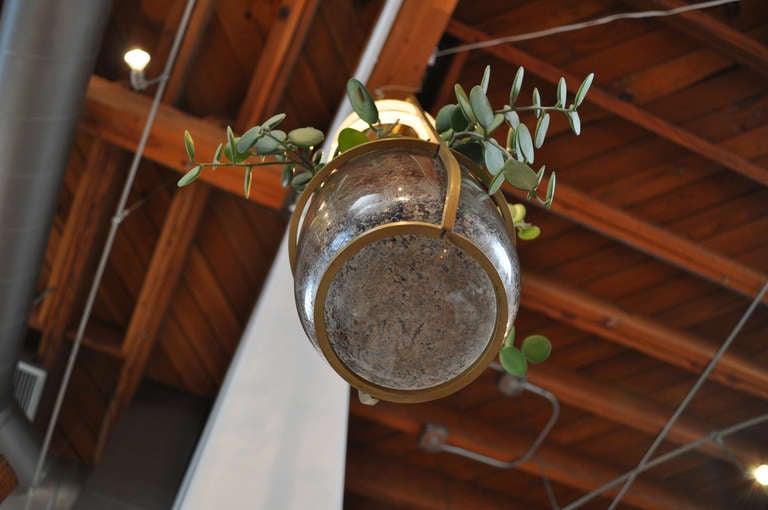 Blown Glass Grow Light by Carmen Salazar For Sale