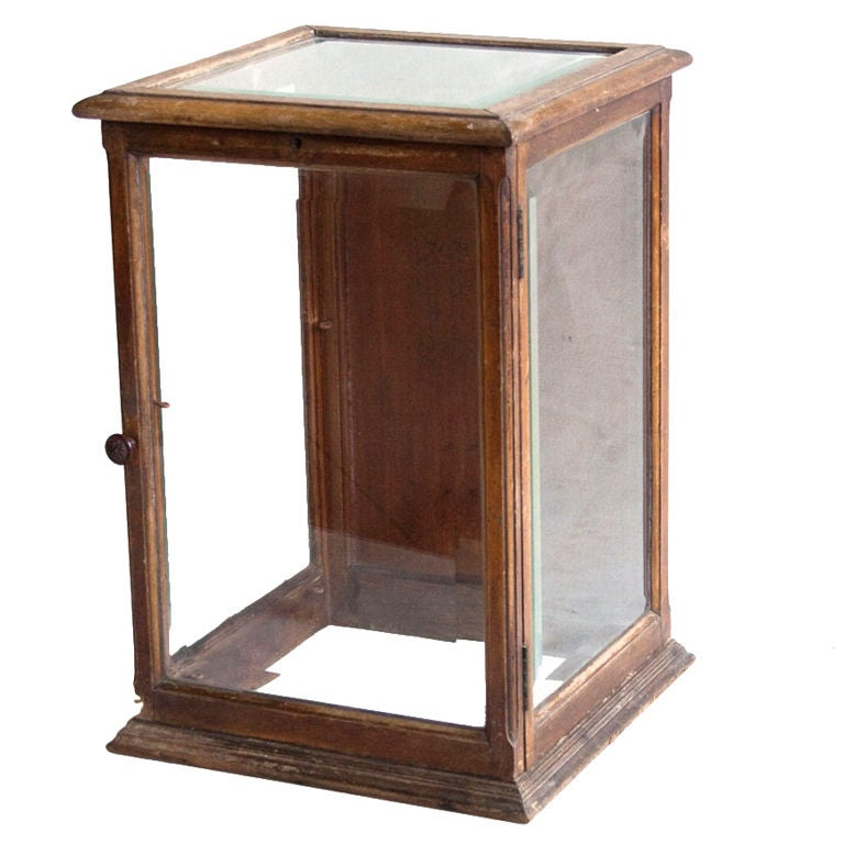 Antique Mahogany Display Case At 1stdibs
