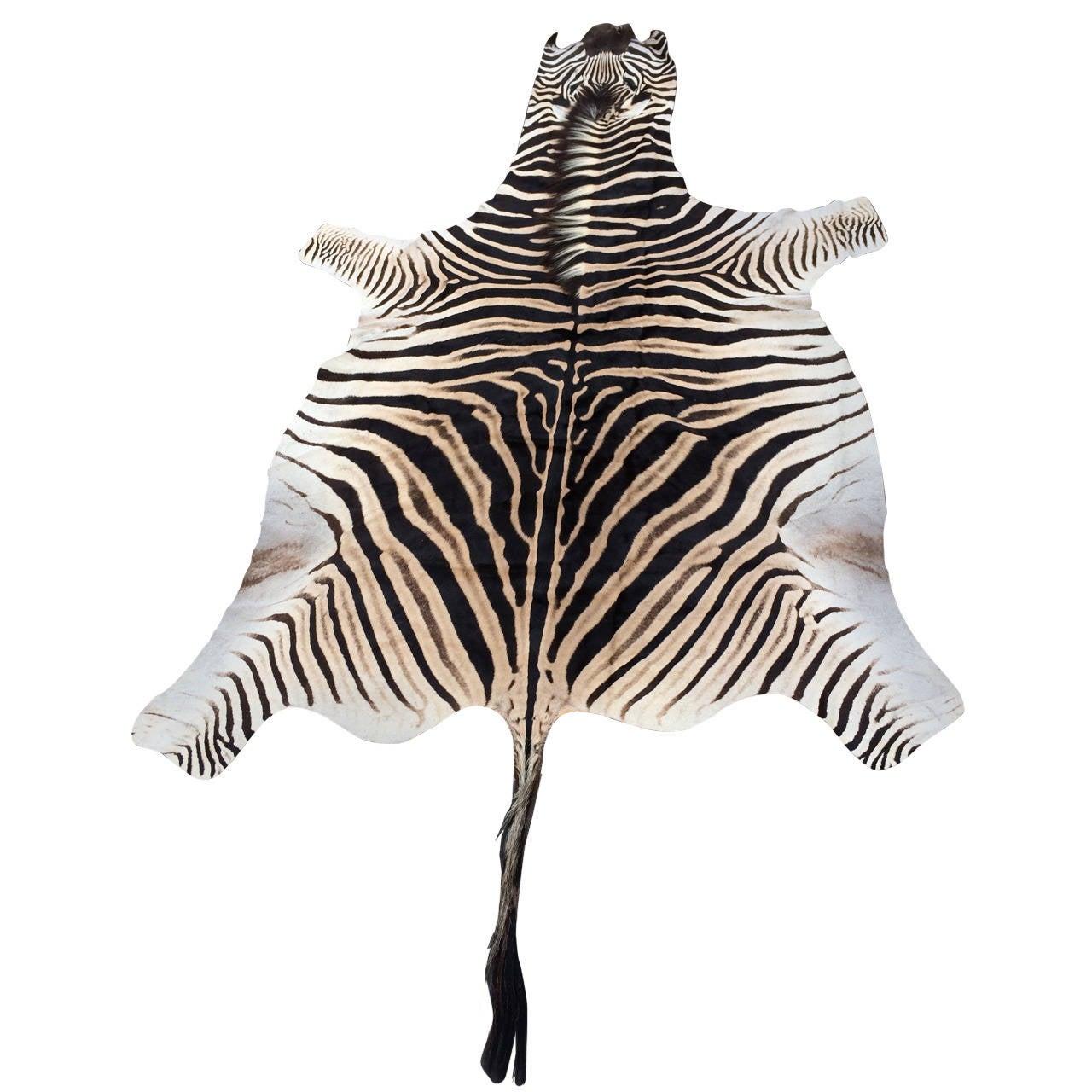 Zebra Rug Los Angeles: Zebra Hide At 1stdibs