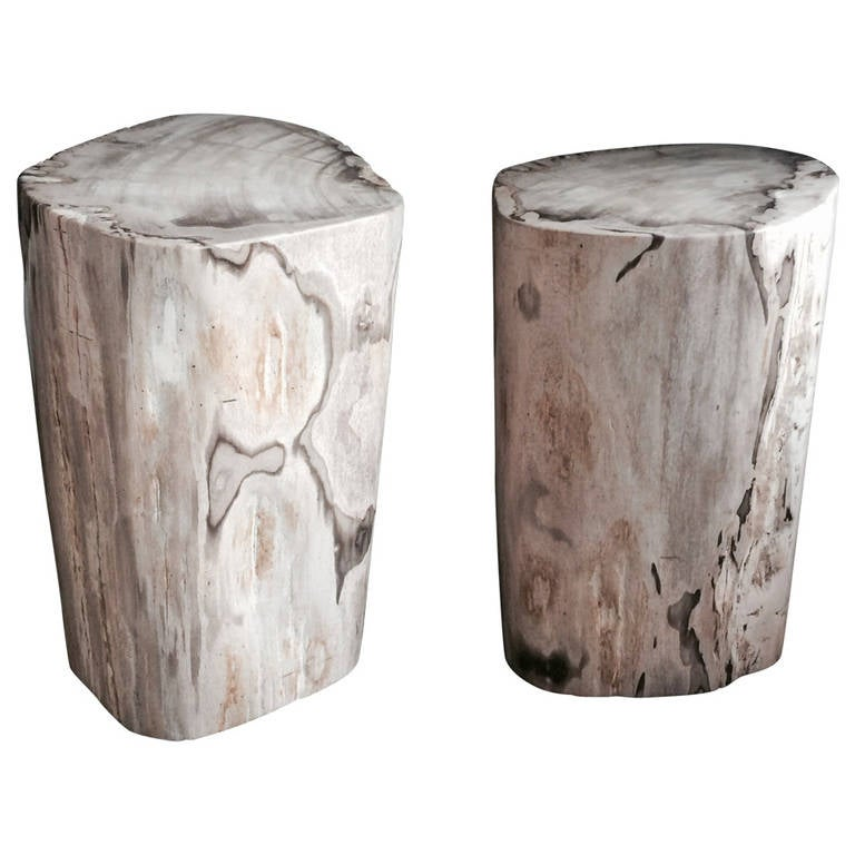 pair of polished petrified wood tables or stools at 1stdibs