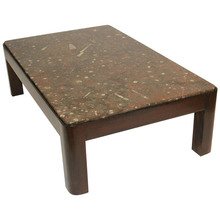 important brazilian limestone coffee table with fossils for sale