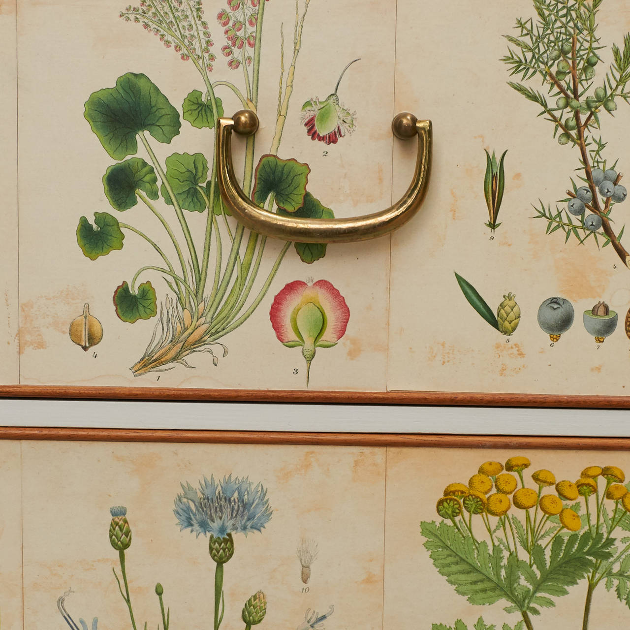 Josef Frank, Chest of Drawers 1