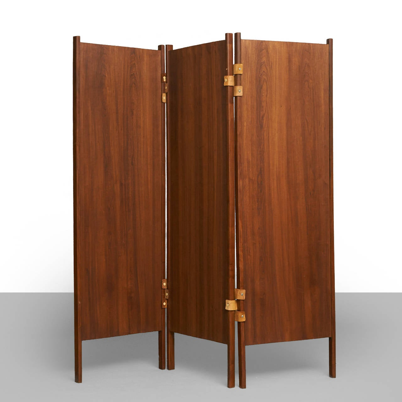 Brazilian Pair of Rosewood Screens For Sale