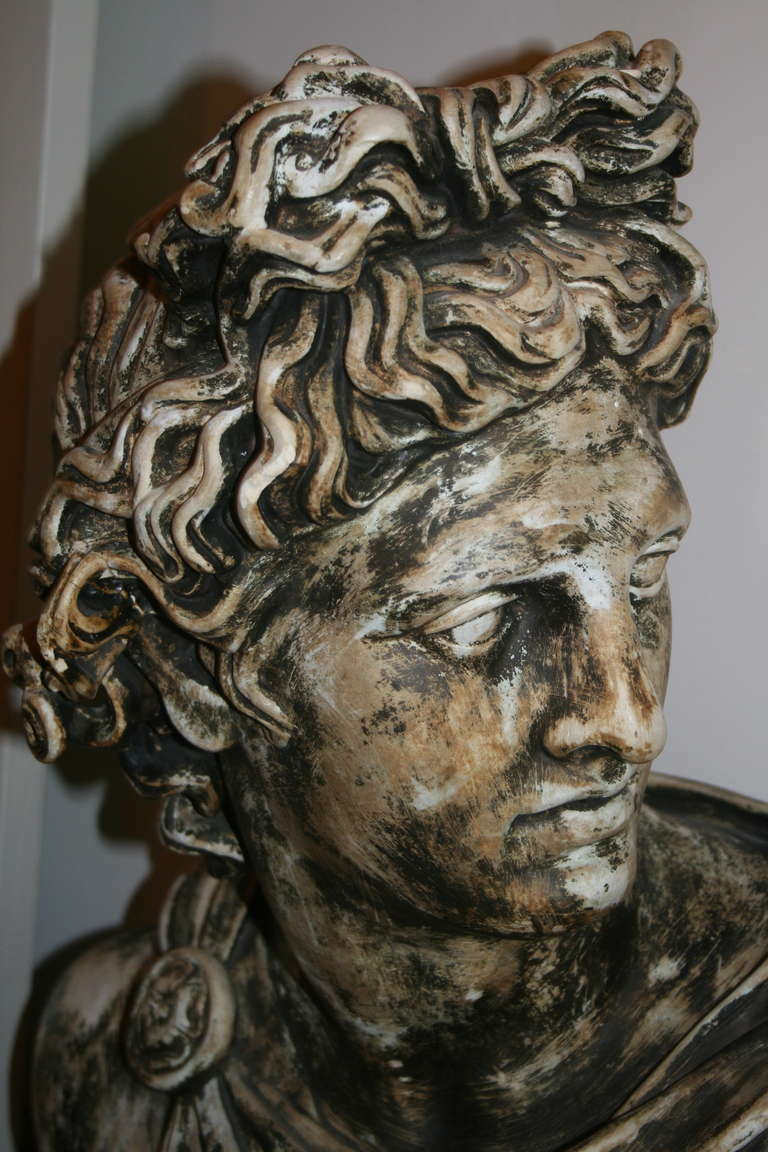 Large Plaster Bust of Apollo Belvedere 3