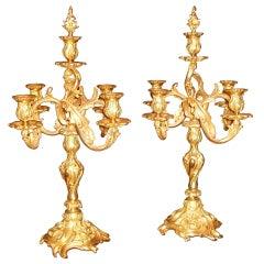 Pair of Bronze Doré Candelabras
