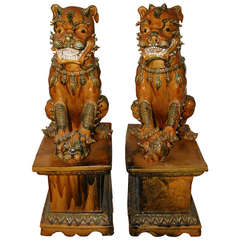 Pair of Large Ochre-Glazed Foo Dog Sculptures
