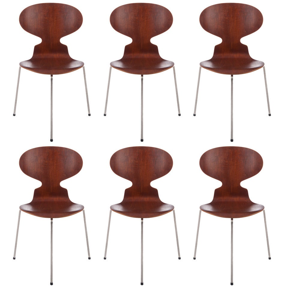 Six Early Arne Jacobsen for Fritz Hansen Three-Legged Ant Chairs